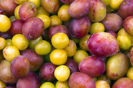 plums and mirabelles
