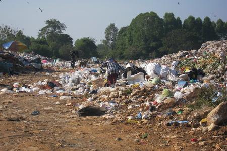scavenging: Trash or Treasure?