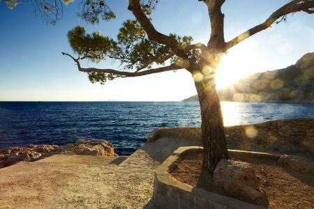 croatian: Croatian coast
