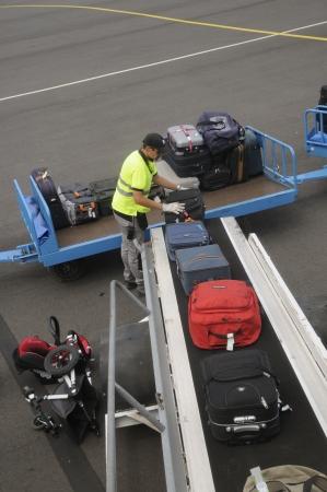 handlers: Airport baggage handler loading bags onto aircraft
