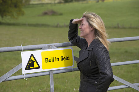 Woman looking over farm gate with Bull in field sign displayed photo