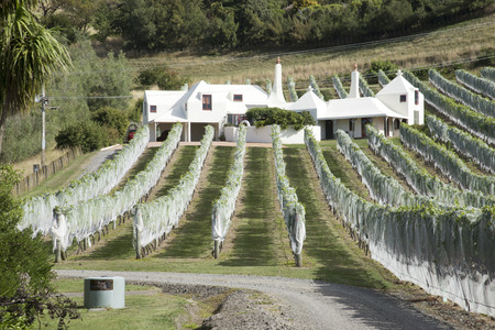 Te Mata Wine Estate at Havalock North in the Hawkes Bay region New Zealand