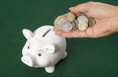 Piggy Bank saving money photo