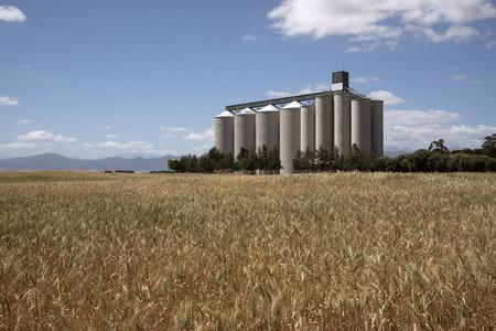 Grain silos and storage at Pools in the Swartland region South Africa Archivio Fotografico