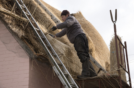 combed: Thatcher with  a spar to secure combed wheat reed on the roof of a house Stock Photo