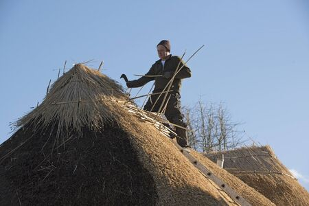 thatcher: Thatcher working on the ridge of a thatched roof with hazel wood spars Stock Photo