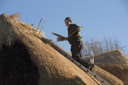 property ladder: Thatcher working on the ridge of a thatched roof with hazel wood spars Stock Photo