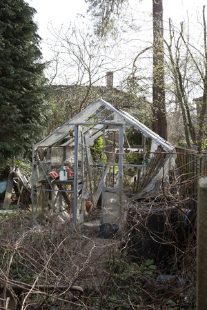 overgrown: A neglected and ruined greenhouse in an overgrown garden Stock Photo