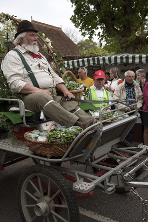 berros: A horse and cart delivers fresh watercress to the annual Alresford Watercress Festival at Alresford Hampshire England UK Editorial