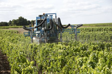Saint Estephe Medoc France August 2016 - A straddle tractor used for spraying vines in the St Estephe region of the Haut-Medoc area of France Editorial