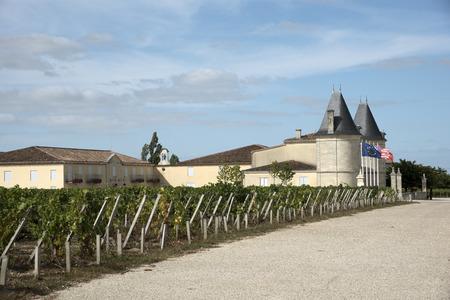 bordeaux region: Saint Estephe wine region France - August 2016 - Chateau Lilian Ladouys the vines and vineyard in Saint Estephe a wine producing area of the Bordeaux region France