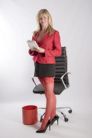 Sexy Secretary Mini Skirt