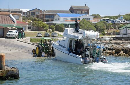 towed: Great White shark dive boat at Kleinbaai Harbour in Gansbaai in the Western Cape South Africa. Dive boat on a trailer being towed onshore with a tractor