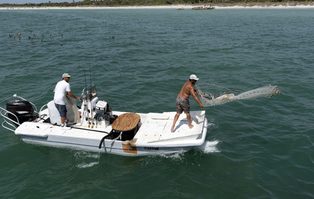 Fishing for bait. Man using a cast net from a small boat on the Gulf of Mexico Florida USA Editorial