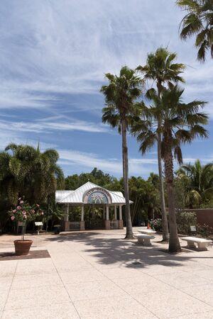 The Palm Garden at Florida Botanical Garden in Largo Florida USA. April 2017
