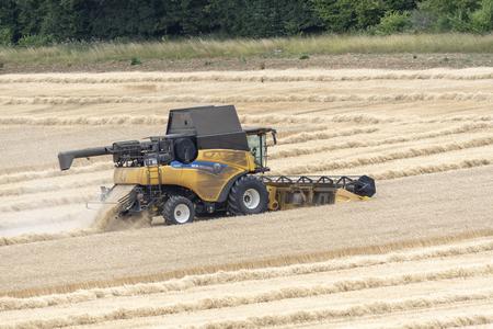 Combine harvester harvesting wheat. England UK.