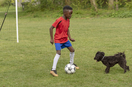 A young football player defending the goal during a traning session with his pet dog in a public park.