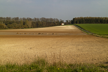 Agricultural land having been seeded. Chalk hillside showing at top.