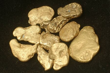 mining gold: Collection of small gold nuggets from Grey River Gold Dredge, West Coast, South Island, New Zealand