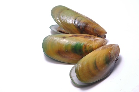 few: green-lipped mussels ready to serve