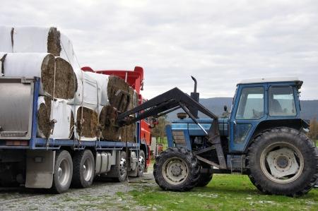 cargador frontal: tractor descarga de fardos de heno de cami�n Foto de archivo