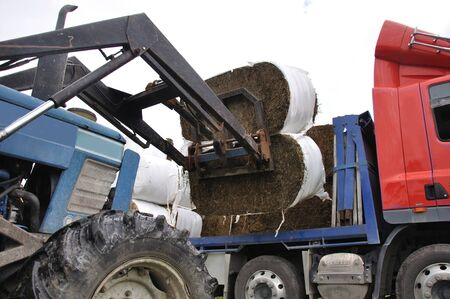 front end: tractor unloading bales of hay from truck; Westland, New Zealand