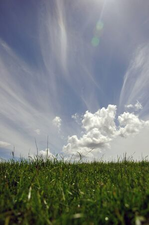 Cirrus clouds over paddocks in Westland, South Island, New Zealand photo