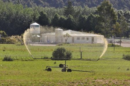 effluent: Spraying out dairy effluent, Westland, New Zealand