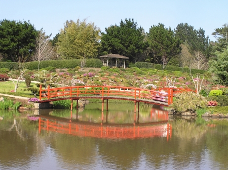 Nikki bridge reflected in lake of Japanese Garden, Toowoomba, Queensland, Australia Stock Photo - 15118319
