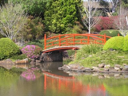 Nikki bridge reflected in lake of Japanese Garden, Toowoomba, Queensland, Australia Stock Photo - 15118340