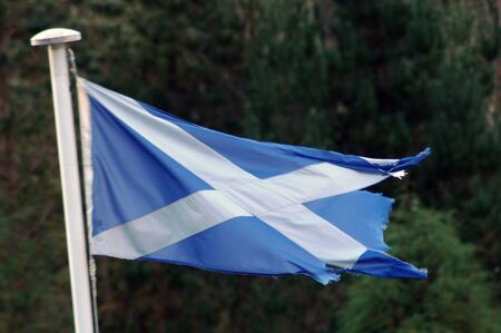 scots: tattered Scottish flag blowing in the wind