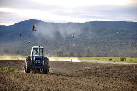 Farmer drilling seed into pasture paddock, Westland, New Zealand photo