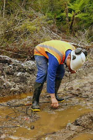 seismic: Man placing geophones in the ground for a seismic reflective survey on the West Coast of New Zealand