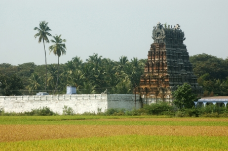 idolatry: Rice paddies and temple in Tamil Nadu, South India
