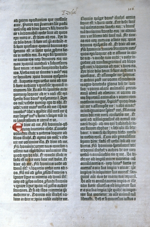 Pagina van de eerste gedrukte Bijbel Gutenberg's 1455 editie van de Latijnse Vulgaat. Hoffelijkheid van de Reed Collection in Dunedin Openbare Bibliotheek, Nieuw-Zeeland