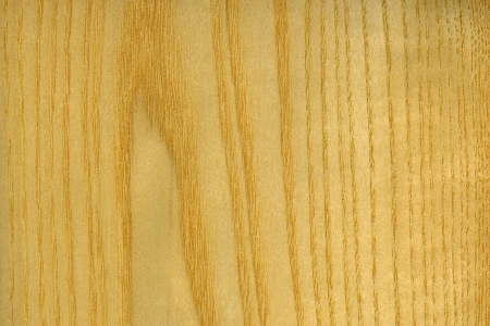 excelsior:  wood grain from European Ash, or Fraxinus excelsior Stock Photo