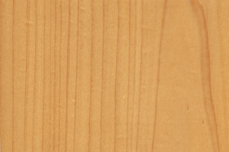 saccharum: background of wood grain from Hard Maple, Acer saccharum, aka as Sugar Maple, Rock Maple, from Northeastern North America Stock Photo
