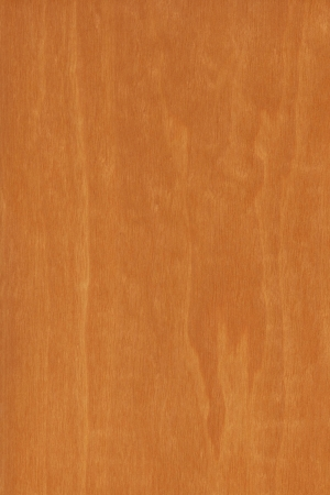 savannas: wood grain from African Birch, Anogeissus leiocarpa, a tall evergreen tree native to the savannas of Tropical Africa.  Stock Photo