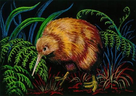 birdlife: Crayon rendering on black background of a New Zealand brown kiwi Stock Photo