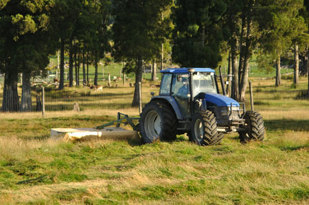 dairying: Tractor mowing pasture for silage, West Coast, South Island, New Zealand