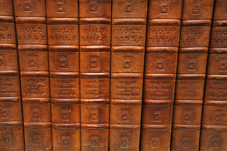 Row of spines from several volumes of the Holy Bible. From the Reed Rare Books Collection in Dunedin, New Zealand.