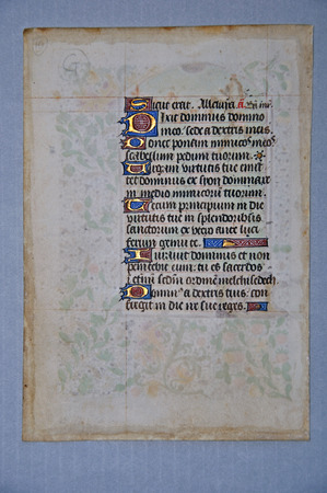 vellum: Page from a 15th Century Book of Hours, written in France on vellum. (Fragment 19) From the Reed Rare Books Collection in Dunedin, New Zealand.
