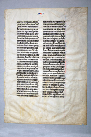 vellum: Page from a 14th Century Latin Vulgate Bible, written in Northern Europe on vellum. (Fragment 11) From the Reed Rare Books Collection in Dunedin, New Zealand.