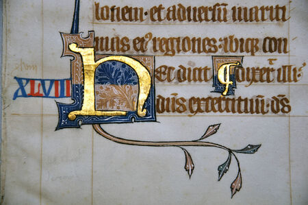vellum: Detail of a letter on a page from a 14th Century Latin Vulgate Bible, written in England on vellum.  The capital letter is illuminated with gold and decorated with white tracery. (Fragment 13) From the Reed Rare Books Collection in Dunedin, New Zealand.