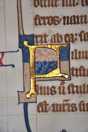 Detail of a letter P on a page from a 14th Century Latin Vulgate Bible, written in England on vellum.The capital letter is illuminated with gold and decorated with white tracery. (Fragment 13) From the Reed Rare Books Collection in Dunedin, New Zealand.