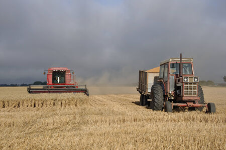 TIMARU, NEW ZEALAND, CIRCA FEBRUARY 2010: Farmers harvest a crop of wheat, South Canterbury, New Zealand Editorial