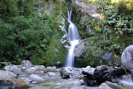 peacefulness: Dorothy Falls near Lake Kaniere, Westland, New Zealand