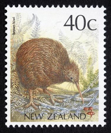New Zealand postage stamp featuring brown kiwi, Apteryx australis