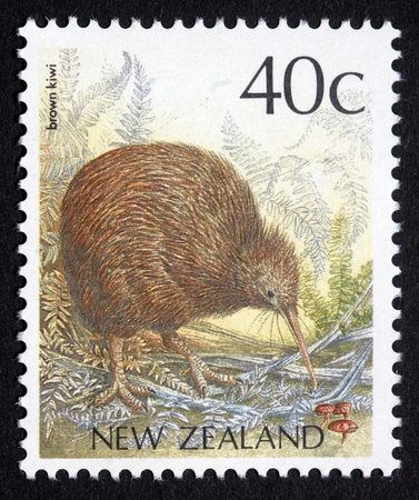 New Zealand postage stamp featuring brown kiwi, Apteryx australis