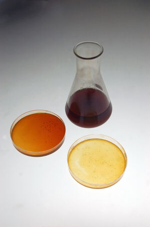 assays: Samples of light crude oil from an exploratory well on the West Coast of New Zealand